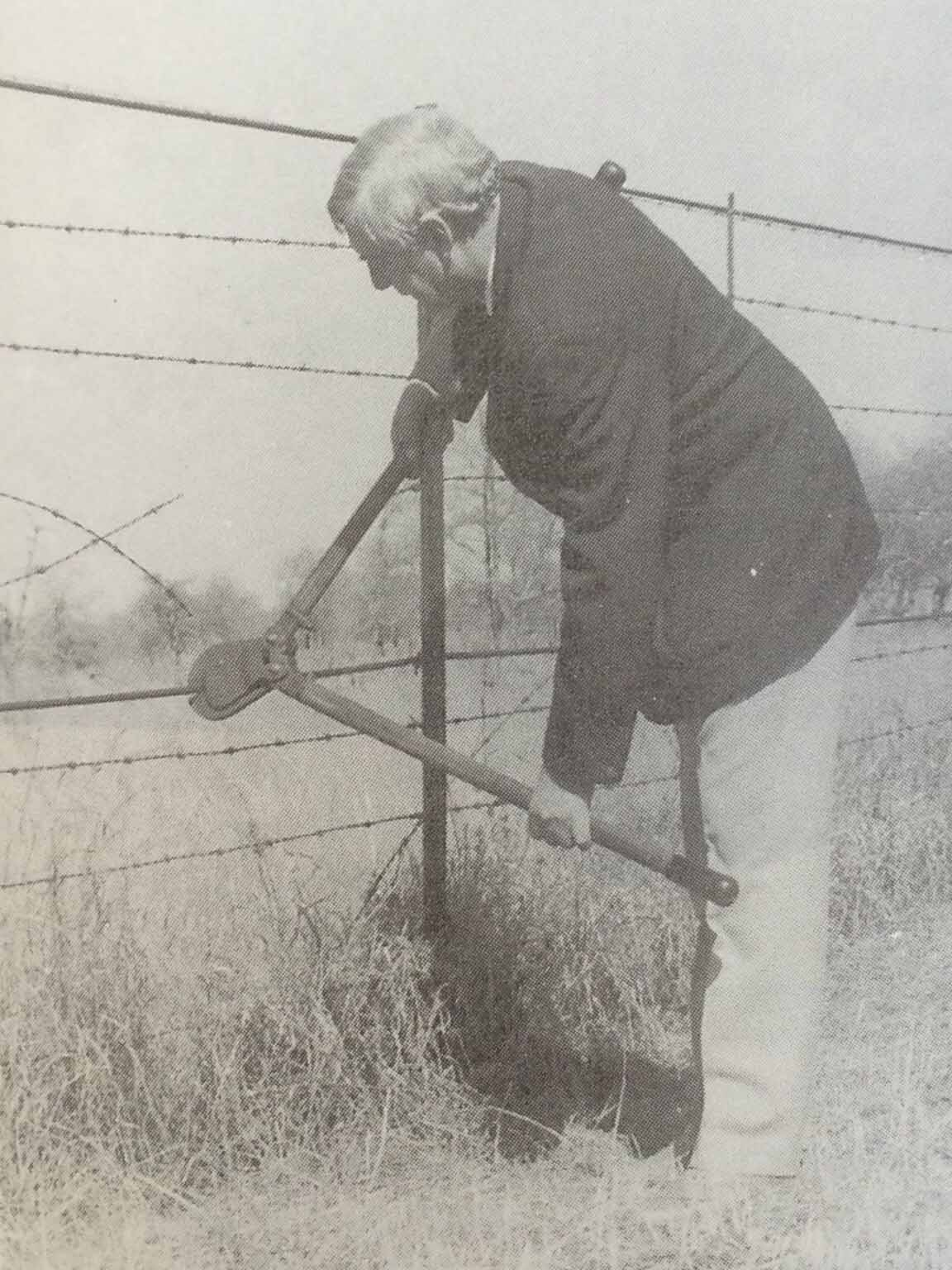 anie Hough, Administrator of the Transvaal, cuts through part of the fence.